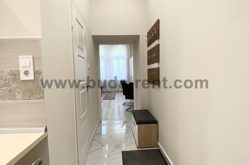 City center,1 room apartment