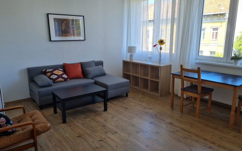 9.District,Close to Semmelweis university & Corvin-Plaza,1 room+Living room